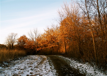 A Bit of Winter